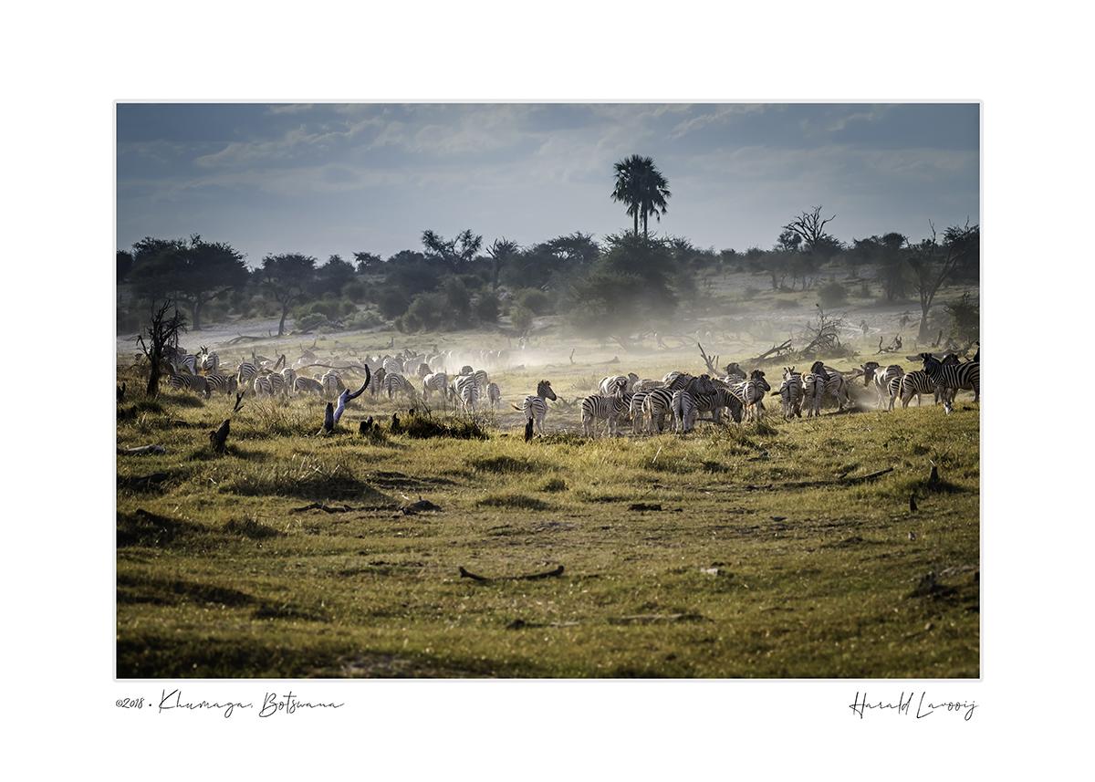 2018_Botswana_Khumaga